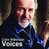 Child of Destiny (From The Musical Voices) - Single by Colm Wilkinson