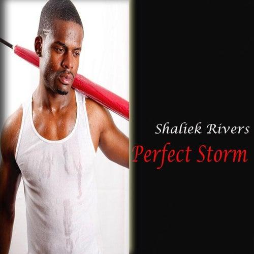 Perfect Storm - Single by Shaliek