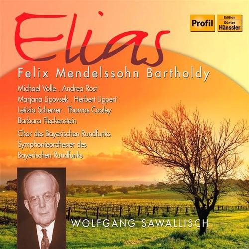 Mendelssohn: Elias by Herbert Lippert