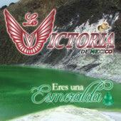 Eres Una Esmeralda by La Victoria de Mexico