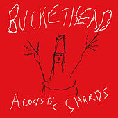 Acoustic Shards by Buckethead