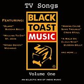 TV Songs, Vol. 1 by Various Artists
