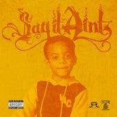 My Closet (feat. Big Sean) - Single by Sayitainttone
