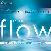 In The Flow by Michael Brant Demaria