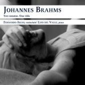 Tres sonatas. Una vida by Johannes Brahms