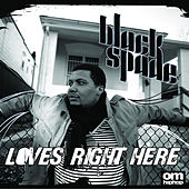 Loves Right Here by Black Spade