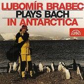 Lubomír Brabec Plays Bach in Antarctica by Lubomír Brabec