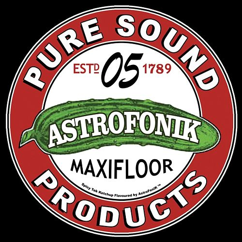 Maxifloor, Vol. 5 by Various Artists