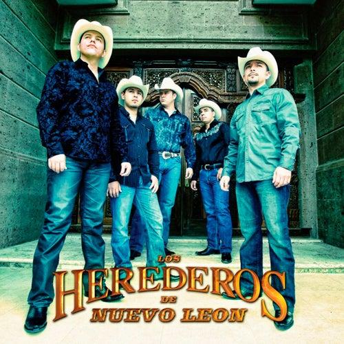 No decidas por mi by Los Herederos De Nuevo Leon