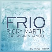 Frío (DJ Wally Remix) by Ricky Martin