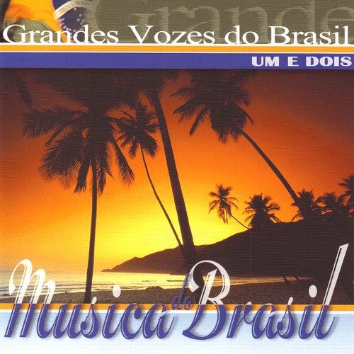 Grandes Vozes do Brasil. Um e Dois by Various Artists