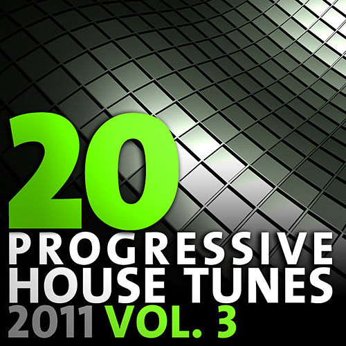 20 Progressive House Tunes 2011, Vol. 3 by Various Artists