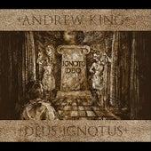 Deus Ignotus by Andrew King