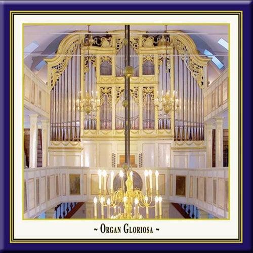 Orga Gloriosa, Vol. 1 by Ulrike Northoff