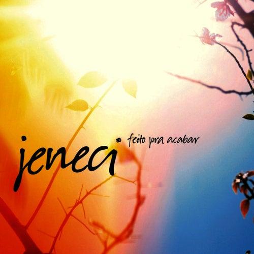 Feito Pra Acabar by Marcelo Jeneci