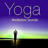 Yoga Medidation Sounds by Various Artists