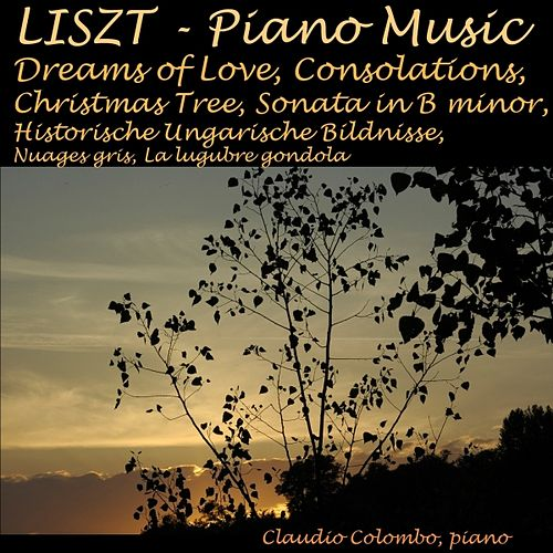 Liszt: Piano Music: Dreams of Love, Consolations, Christmas Tree, Sonata In B Minor, Historische Hungarische Bildnisse, Nuages gris, La lugubre gondola by Claudio Colombo