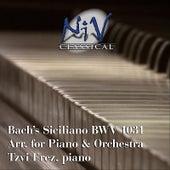 Bach Siciliano from Flute Sonata No. 2 in E-Flat Major, BWV 1031 by Tzvi Erez