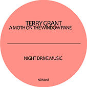 A Moth On The Window Pane EP by Terry Grant