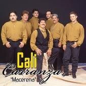Macarena by Cali Carranza