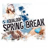 Aqualoop Spring Break by Various Artists