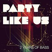 Party Like Us Records 2 Year Anniversary Compilation by Various Artists