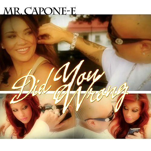 Did You Wrong by Mr. Capone-E