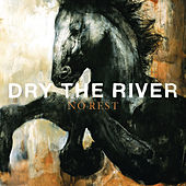 No Rest by Dry The River