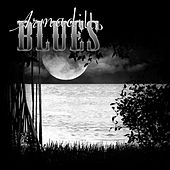 Swamp Music by Armadillo Blues