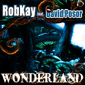 Wonderland (Electro Edition) by Robkay