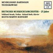 Mendelssohn: Concerto for Violin and Piano in D minor - Tchaikovsky: Souvenir de Florence by Hanns-Martin Schneidt