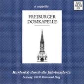 Marienlob Durch die Jahrhundert by Raimund Hug