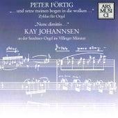 Fortig: … und setze meinen goben in die wolken … / Nunc dimittis … by Kay Johannsen