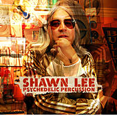 Psychedelic Percussion by Shawn Lee's Ping Pong Orchestra