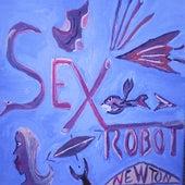 Sexrobot by Newton