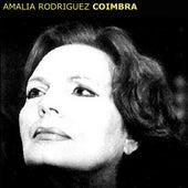 Coimbra by Amalia Rodriguez