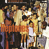 The Meaning Of Life: Best Of The Heptones 1966-1976 by The Heptones