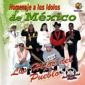 Homenaje A Los Idolos De Mexico by Los Hijos Del Pueblo