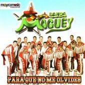 Para Que No Me Olvides by Banda Maguey