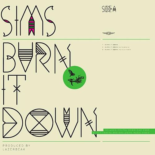 Burn It Down by Sims