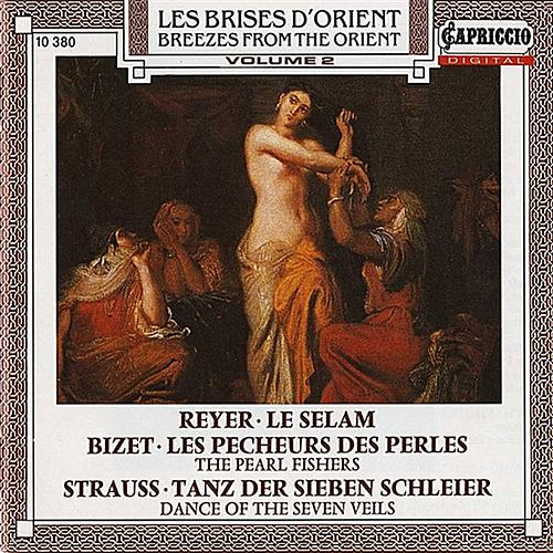 Breezes From the Orient, Vol. 2 by Various Artists