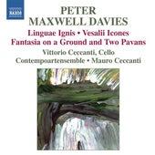 Maxwell Davies: Linguae ignis - Vesalii Icones by Mauro Ceccanti