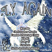 Fly Again Riddim by Various Artists