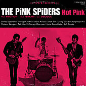 Hot Pink by The Pink Spiders
