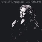 Los Piconeros by Amalia Rodriguez