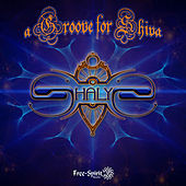 a Groove for Shiva by Various Artists