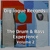 The Drum & Bass Experience Volume 2 by Various Artists