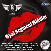 Gyal Segment Riddim by Various Artists