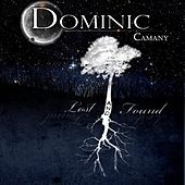 Lost and Found by Dominic Camany