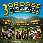3 Grosse aus dem Zillertal, Folge 1 by Various Artists